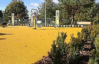 Centrum Wolicy wypiêknia³o. Minipark otwarty