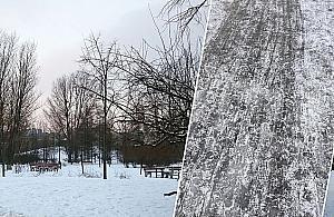 """""""Szklanka"""" w parku Górczewska. """"Od¶nie¿ymy, jak przestanie padaæ"""""""