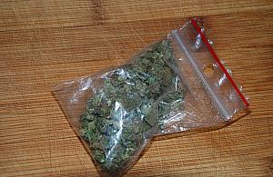 """Poszed³ do pracy z marihuan±. """"Policjantów wezwa³ pracodawca"""""""