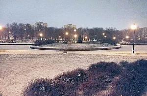"""Wycinka w parku Bródnowskim. """"Znowu bêdzie pustynia"""""""