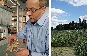 Historia sprzed 8 tys. lat. £owca z Wieliszewa