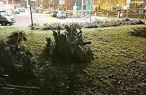 Rusza budowa metra. 665 drzew pod topór