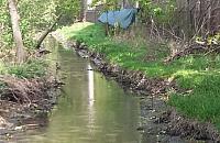 """¦mierdz±ce rzeki i rzeczki. """"Potok nielegalnie wylewanego szamba"""""""