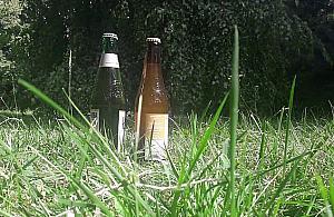 """Legalne piwo pod chmurk�? """"I tak wszyscy pij�"""""""