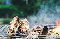 Biesiada na ca�ego. Betonowe grille w parku G�rczewska