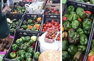 Warzywa i owoce za darmo. Pi�tki na Wolumenie
