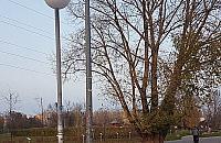 """Strach chodzi� przez park G�rczewska. """"Przera�aj�co ciemno"""""""