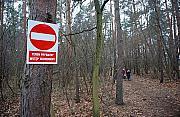 Las do wycinki? Inwestor chce postawi� willowe osiedle