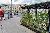 """Zielone przystanki na Targ�wku. """"Poprawi� krajobraz dzielnicy"""""""