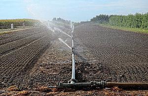 Trwa nab�r wniosk�w na nawadnianie gospodarstw rolnych