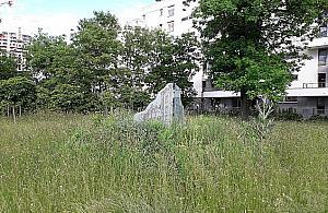 Pomnik uton�� w chwastach. Wygl�da �a�o�nie