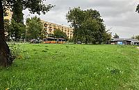 Handel, zieleń, kawiarnie: plan na Broniewskiego