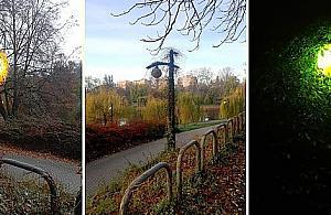 """""""Gwiazda"""" parku Moczyd³o. """"Jest niepowtarzalna"""""""
