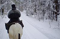 """""""Koñ nie jest w³adc± lasu"""". Wojna rowerzystów i je¼d¼ców o le¶ne dukty Wawra"""
