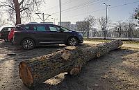 """Z cyklu """"100 lat planowania w Polsce"""": k³oda parkingowa"""