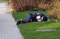 Po lanym poniedzia³ku zapad³ w g³êboki sen na jednym z trawników pod Galeri± Bemowo