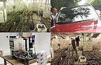 Plantacja konopi w Jachrance. Policja zatrzyma³a trzy osoby