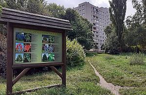 Mia³ byæ park, nie ma nawet ³awek. Ratusza nie staæ?